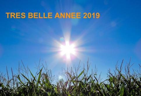 Meilleurs Voeux Pour Lannee 2019 Equipe Site Objetsolaire